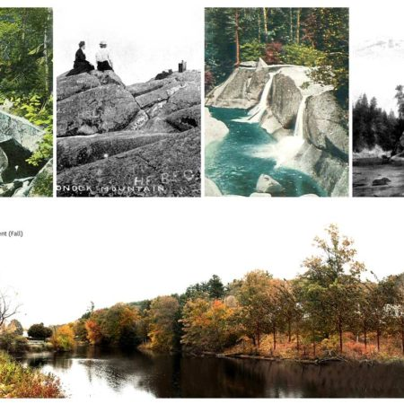 01_4-old-postcards_littoral-environments