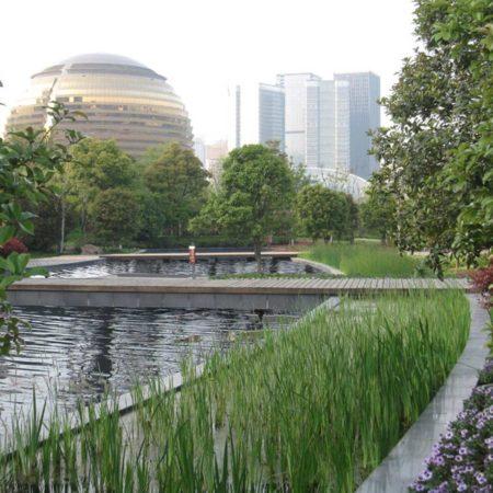 5-03-wild-flower-pond