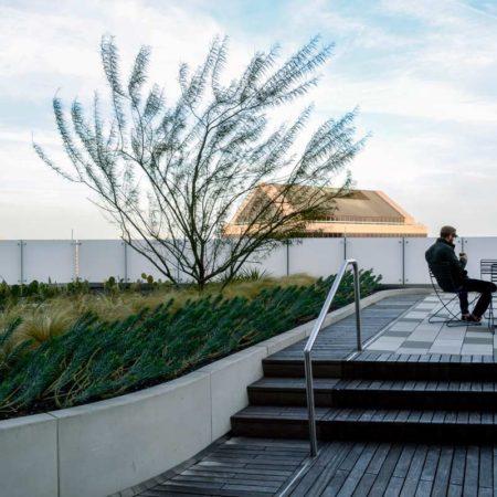 816-congress-roof-terrace-2