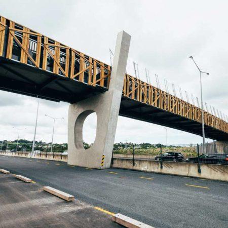 isthmus_taumanu_reserve_bridge_4