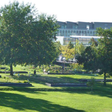 mp-botanical-garden-vi