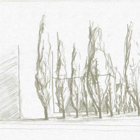 nd-05-street-trees