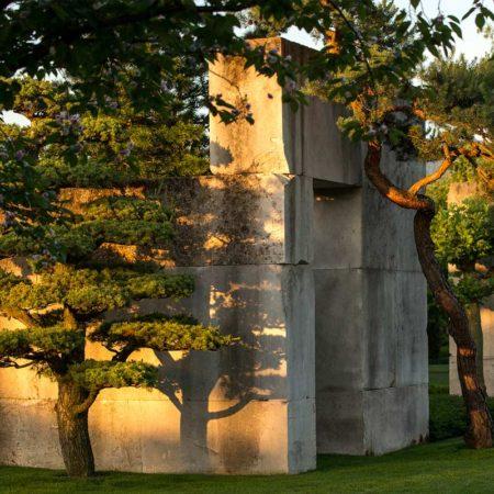 treemuseum-enea_3