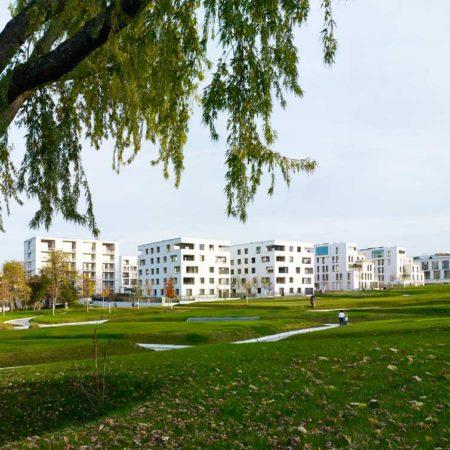 view-from-park-toward-adjacent-buildings_stefan-mu%cc%88ller
