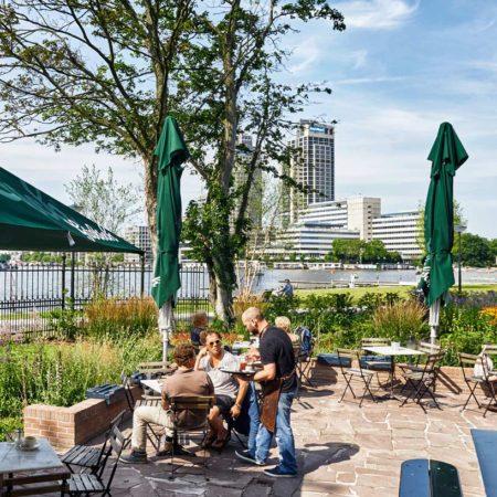 at-the-tea-garden-picture-by-peter-van-dijk