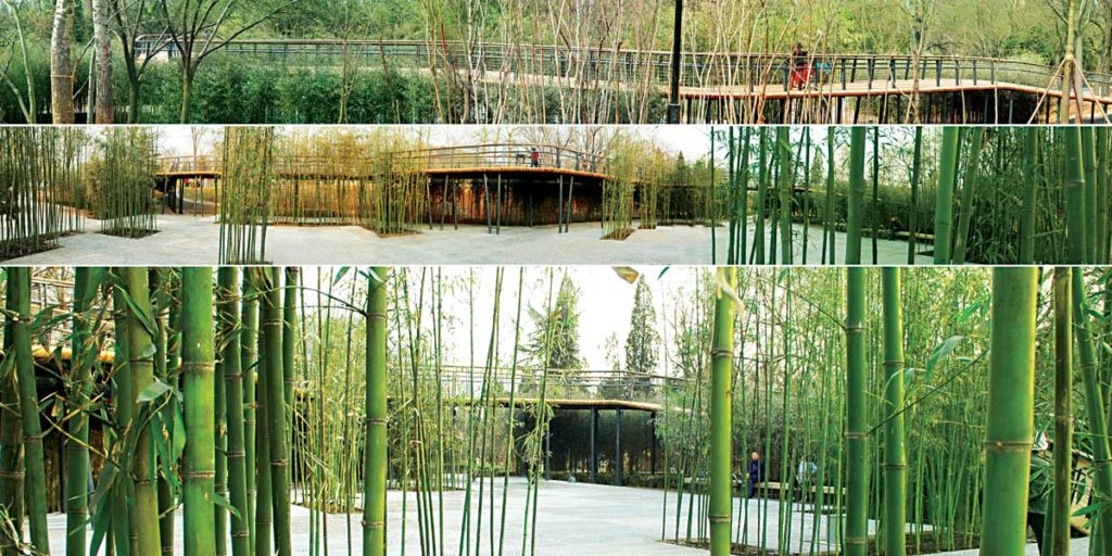 Constructed In The 1960s Tangshan Phoenix Hill Park Used To Be Recognized As A Legacy Of Declined Industrialized Era That Is Deprived From Modern