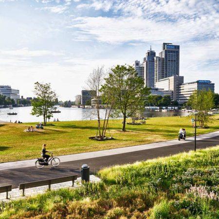 view-towards-the-city-picture-by-peter-van-dijk