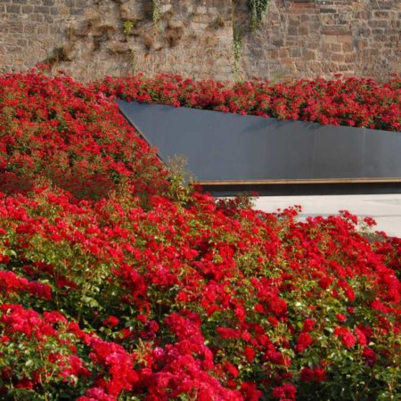 04_Marburg-Garden-of-Remembrance