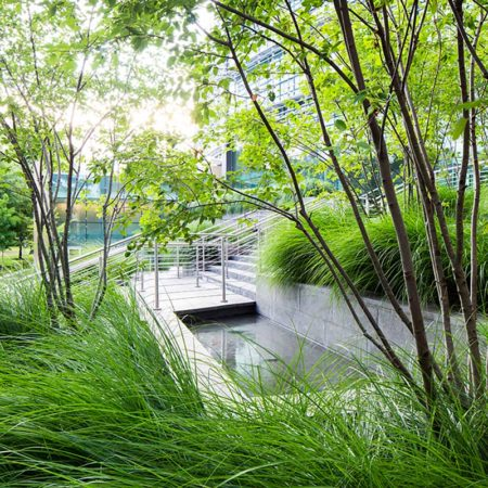 06-SUNY-Simons-Center-Water-Feature
