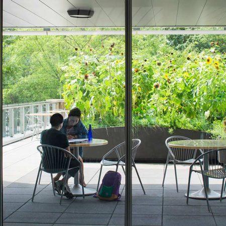 09-SUNY-Simons-Center-Roof-Garden-Study-Area