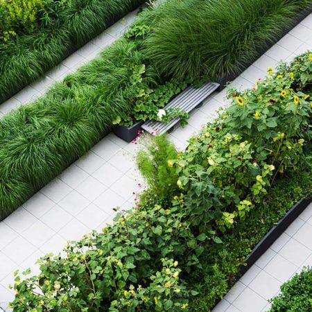 11-SUNY-Simons-Center-Roof-Garden