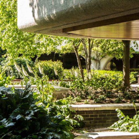 13-Garden-planting