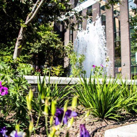14-Garden-fountain-and-plants