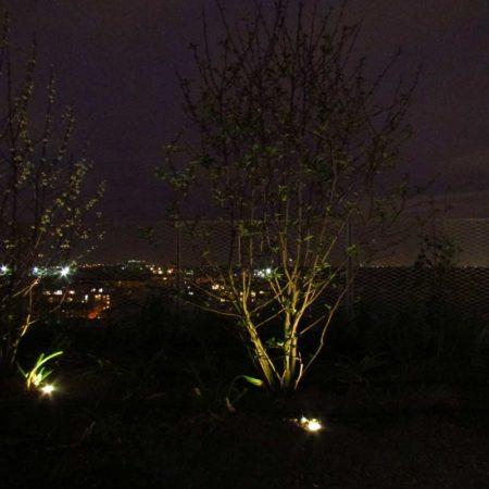 24.-Night-Uplight