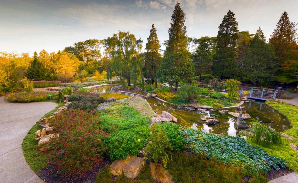 Quarry Botanical Garden Fasci Garden