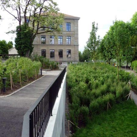 Ilgen_05_garden