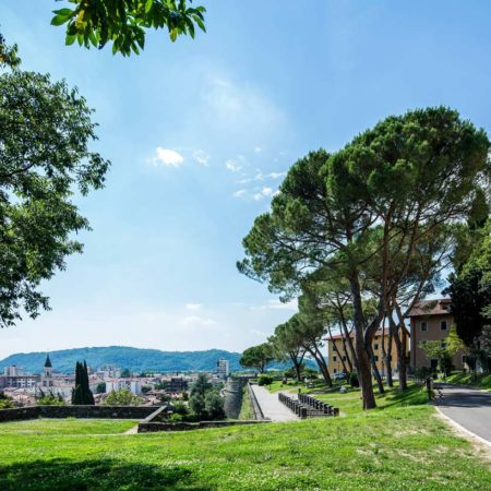 9---View-on-Gorizia-from-the-west-bailey