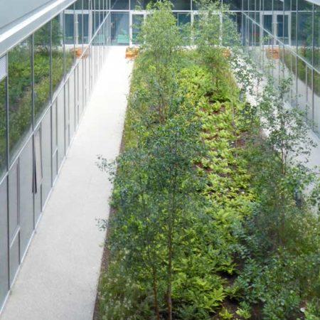 City-Garden-level-1