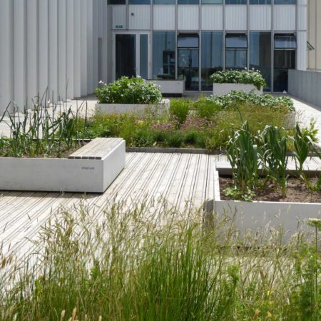City-roof-garden-level-4