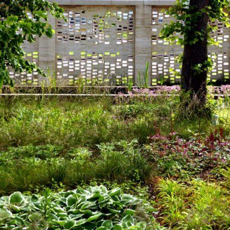 Maggies-Woodland-Planting
