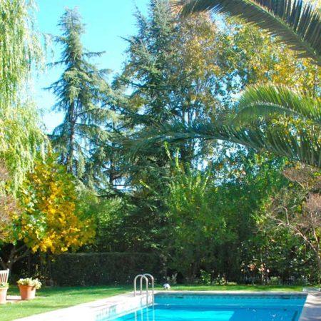 jardin_monoceros_5
