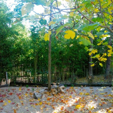 jardin_monoceros_8