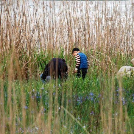 09-Man-and-Boy-at-Reeds