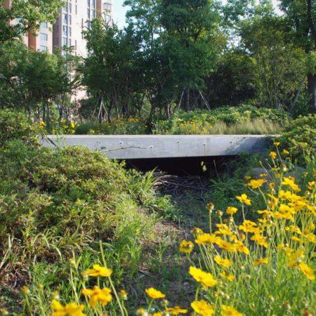 13-Bridge-Over-Swale