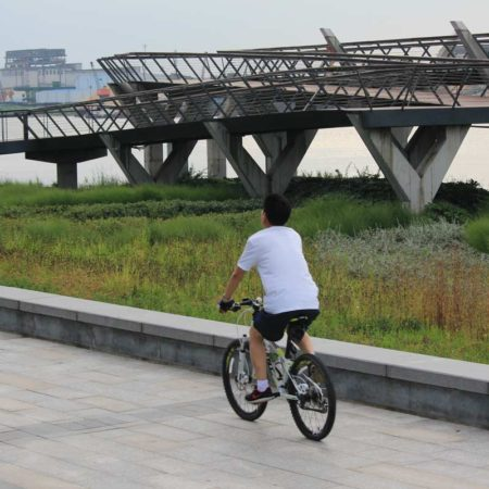 15-Cyclist