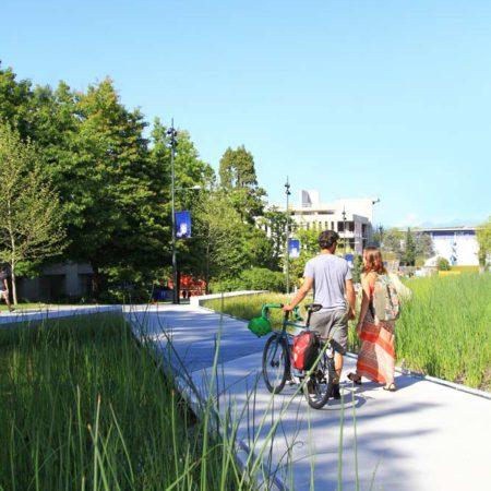 University-Boulevard-_hr16_Krista-Jahnke
