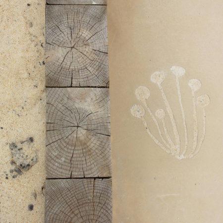 04_2016_©-«D'une-Ville-à-l'autre-...»_Imprints-carved-from-the-sandy-concrete