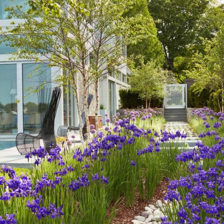 14.-Stormwater-swale,-rain-garden