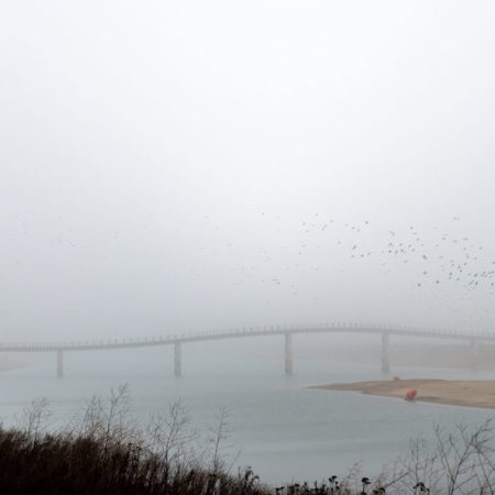20_Zalige-bridge_Photography-Maerten-Prins