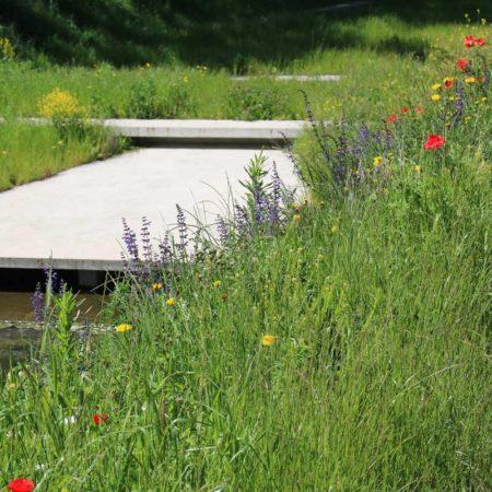 25-Naturalization-river-channel-landscape-architecture-Superpositions