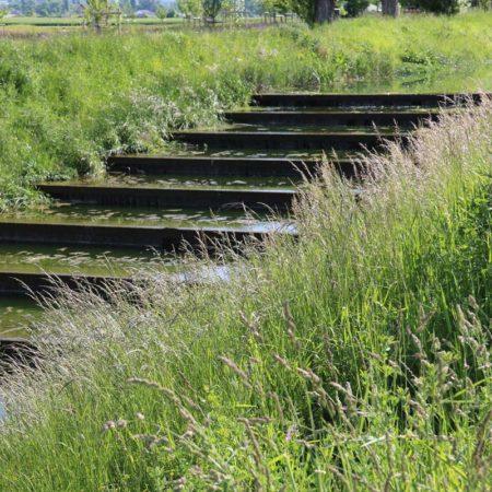 27-Naturalization-river-channel-landscape-architecture-Superpositions