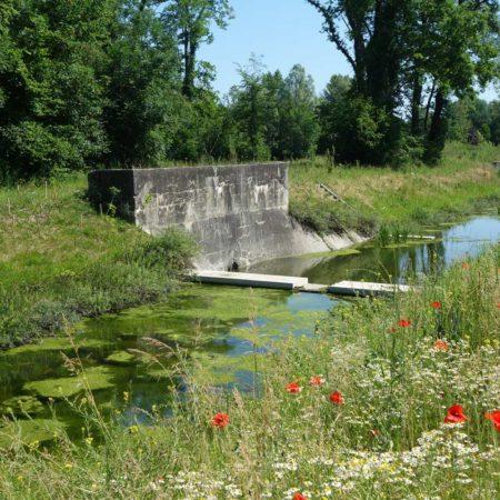 30-Naturalization-river-channel-landscape-architecture-Superpositions