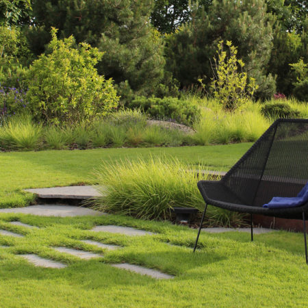 9-backyard