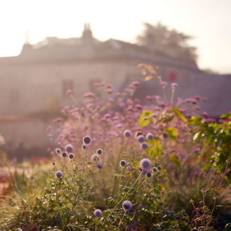 Museum-in-The-Park-Walled-Garden-08-photo-Mark-Welsh