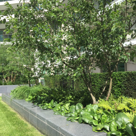 Private-terrace-raised-planter