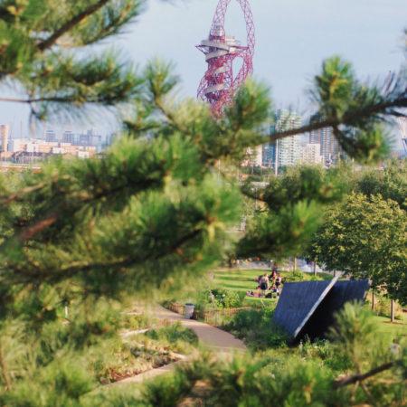 Tumbling-Bay-Playground---28