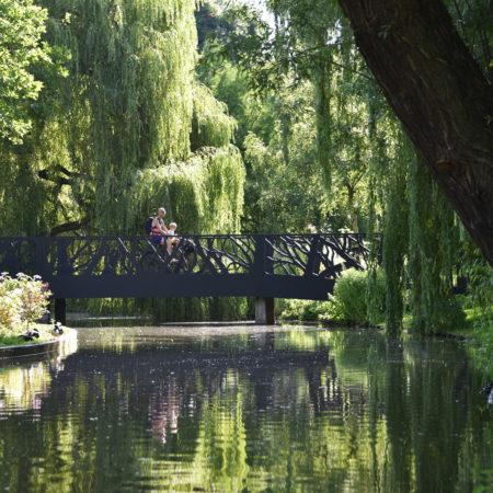 buro-sant-en-co-landschapsarchitectuur-oosterpark-amsterdam-ontwerp-treebranches-bridge