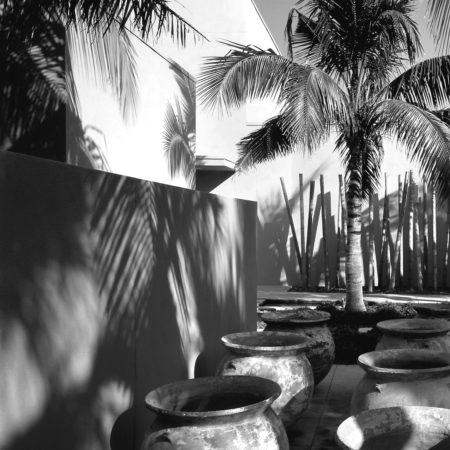 modern-garden-(4)