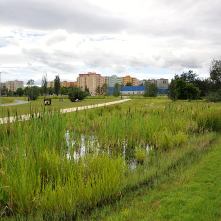 pond-by-entrance-2016-