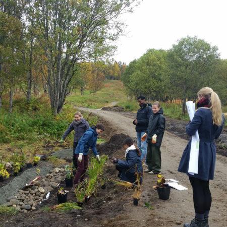 students-build-raingarden