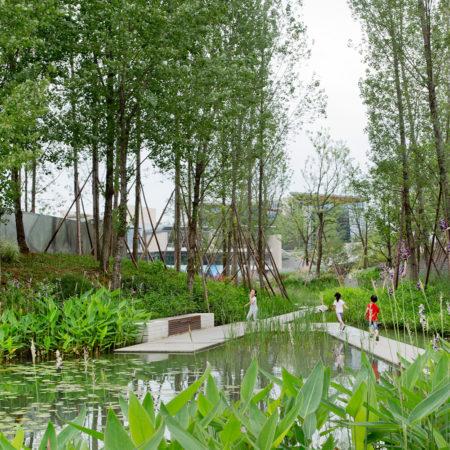 013-wetland