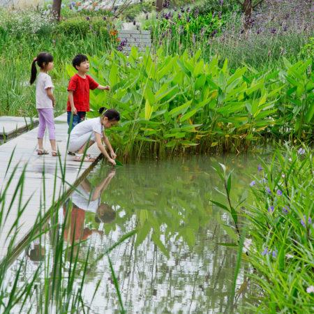 014-wetland