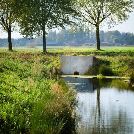 Clementwijk-Sint-Niklaas_dv038