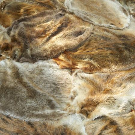 EX-(12)-Exhibition-Cover-of-Beaver-Fur-Pelts
