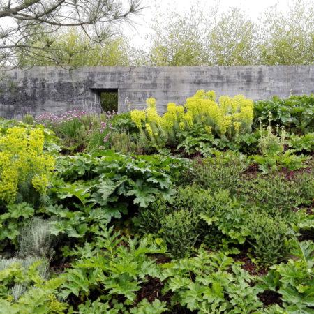de-molfetta-strode-garden-02