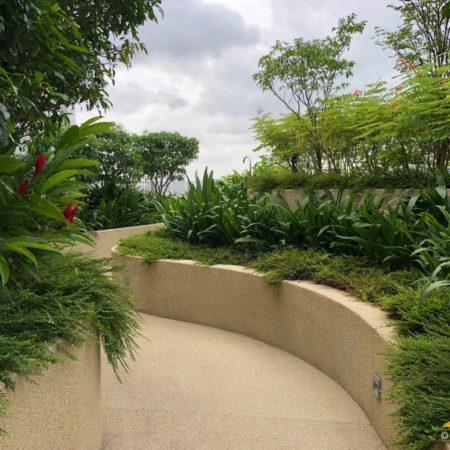 22 AMK Garden walk at Roof terrace_SN